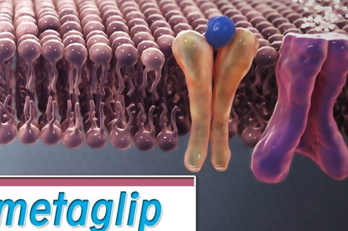 Metaglip review: useful medical facts for patients